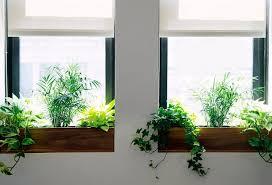 window planters indoor indoor window sill planter mkua info