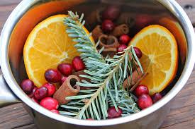 carolina charm christmas in a pot stovetop potpourri
