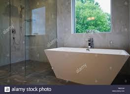Modern Bathroom Tub Modern Bathroom With Free Standing Bath Tub And Glass Fronted