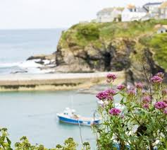 Holiday Cottages Port Isaac by Best 25 Port Isaac Ideas On Pinterest North Cornwall England