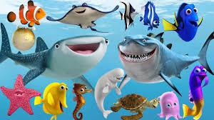 learn sea animals new disney pixar finding dory nemo cartoon