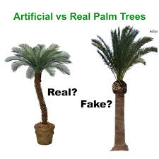 artificial palm trees for sale vs real palms trees which is better