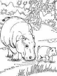 african animal coloring pages hippo family kleurplaat