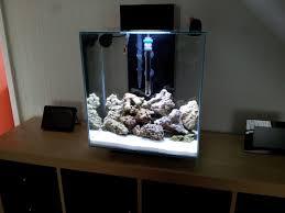 fluval edge marine light fluval edge 46l reef project tropical fish forums