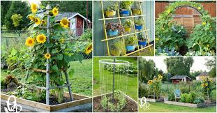 Trellis Garden Ideas 20 Easy Diy Trellis Ideas To Add Charm And Functionality To Your