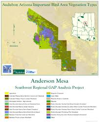 Mesa Arizona Map by Anderson Mesa Iba Arizona Important Bird Areas Program