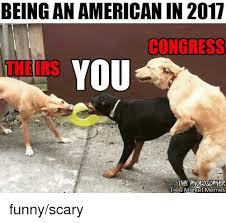 Funny Scary Memes - being anamerican in 2017 congress you theirs the pltolosopher free