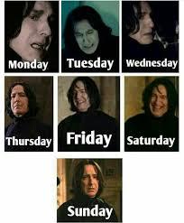 Snape Meme - snape s of the week harry potter pinterest harry potter