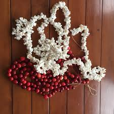 birdseed ornaments and popcorn cranberry garland hooray for