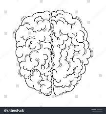 brain anatomy coloring book human brain medical design stock vector 548863456 shutterstock