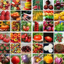 vegetable garden seeds ebay