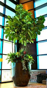 Indoor Flowers 406 Best Greenhouses U0026 Sunrooms Indoor Plants Images On Pinterest