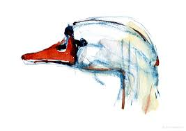 swan watercolor sketches the hiking artist project by frits