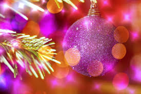 Branch Christmas Tree With Lights - free images branch bokeh flower petal colorful pink decor