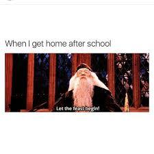 Harry Potter Trolley Meme - pinterest annnalong funny pinterest harry potter memes