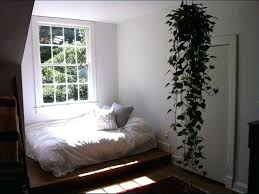 room with plants plant bedroom a bedroom plants oxygen portalsmo club