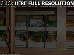 Best Kitchen Cabinet Organizers by Best Kitchen Cabinet Organizers Kitchen Decoration Ideas