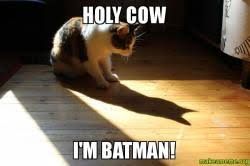 Im Batman Meme - holy cow i m batman holy cow im batman make a meme