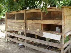 Backyard Chickens Forum by Http Www Backyardchickens Com Forum Uploads 6612 Feeders Jpg