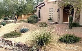 ornamental grass archives ramblings from a desert garden