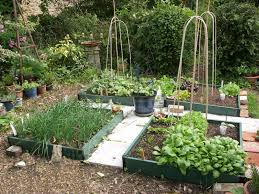 small potager garden design google search gardens pinterest