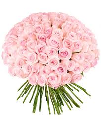 roses bouquet 101 light pink roses bouquet roseberry flowers miami order