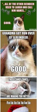 Grumpy Cat Snow Meme - tard the grumpy cat i don t even know where to categorize this i
