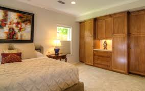 Cabinets For Bedroom Wall Interesting Bedroom Closets And Wardrobes Pics Decoration Ideas