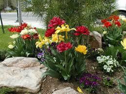 elegant easy flower garden for beginners flower gardening made