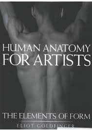 Human Anatomy Pdf Books Free Download Teaching Resources Studio Holland