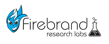 sales key words increasing sales and visibility with keywords firebrand technologies