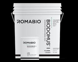 biodomus i romabio changing the way the world makes paint