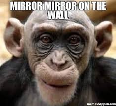 Mirror Meme - mirror mirror on the wall meme chimp 46560 memeshappen