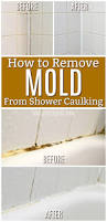 best 25 cleaning shower mold ideas on pinterest shower mold