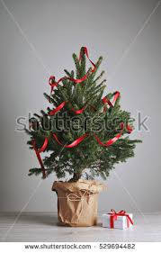 christmas tree pot stock images royalty free images u0026 vectors