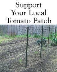 32 diy tomato trellis u0026 cage ideas for healthy tomatoes