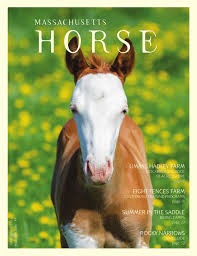 massachusetts horse june july 2015 by community horse media issuu