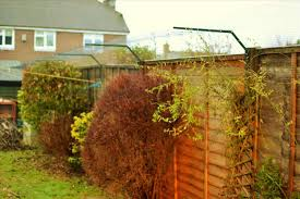 to build an or catio teediddlydee how outdoor fences for cats to
