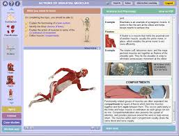 Human Anatomy And Physiology Case Studies Essentials Of Human Anatomy Website Inspiration Anatomy And