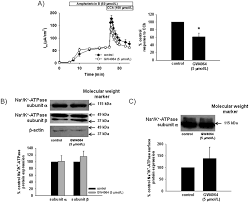 farnesoid x receptor agonists attenuate colonic epithelial
