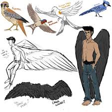 353 best wings and poses images on pinterest character design