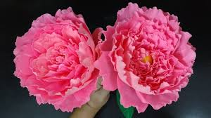 Peony Flowers How To Make Paper Flower Peony Flower 158 Youtube
