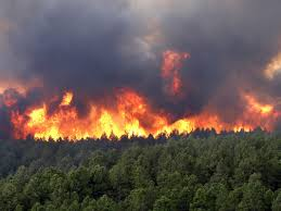 Wildfire Brookings by Picking Apart Wildfires Wupopsci Washington University Popular