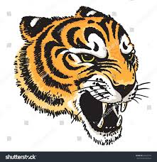stylized vector drawing tigers face stock vector 643723741