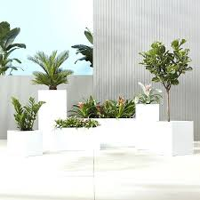 white indoor pots u2013 instavite me