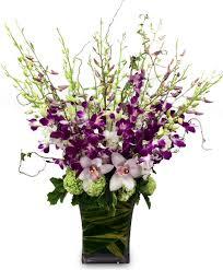 newport florist bombay galore by newport florist nf252 in newport ca