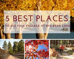 5 places fall foliage colors big bear lake