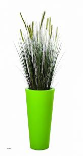 plante bureau bureau plante pour le bureau luxury plante pour bureau hubfrdesign