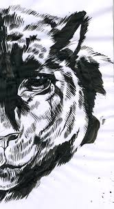 mc drawn panther u2014 sketch brush and ink
