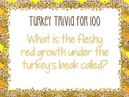 thanksgiving fractions turkey fraction trivia by